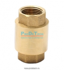 Brass spring check valve